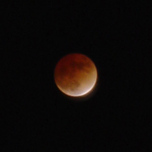 Lunar Eclipse, as viewed from New York City, November 8, 2003